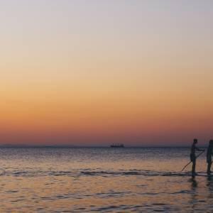 Bike paddling: the trend of summer 2021