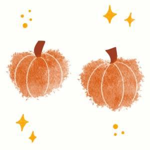 Autumn potpourri brew