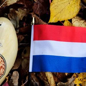 4 typical Dutch habits