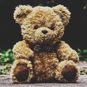 It's national Teddy bear day